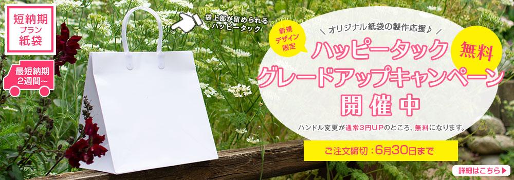 短納期プラン紙袋(国内生産)