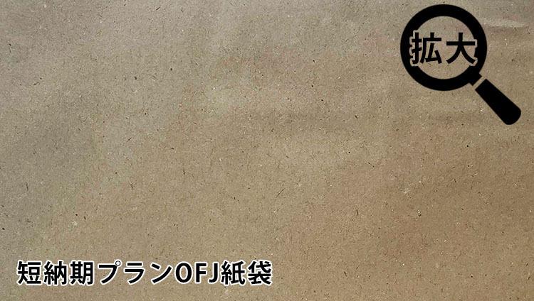 再生紙(短納期プランOFJ紙袋)
