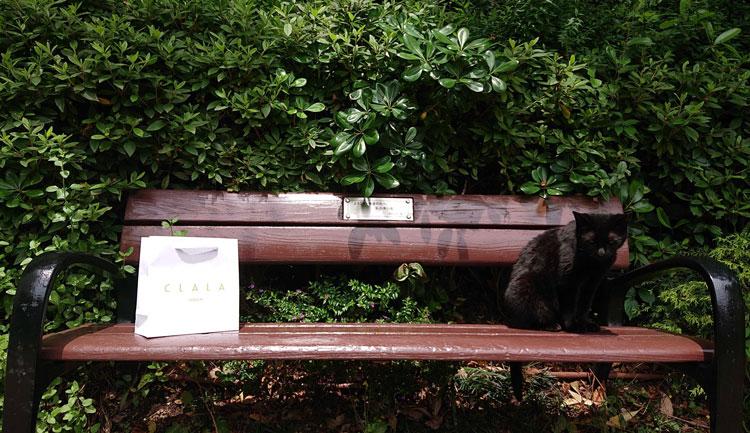 スキンケア用品販売店様の小さいオリジナル紙袋と猫
